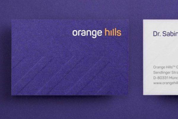 Orange Hills Corporate Design